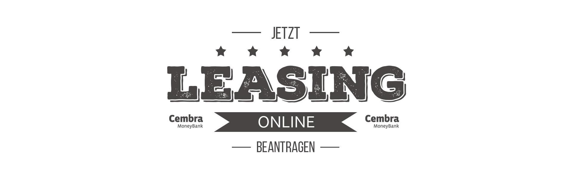 Leasingantrag5